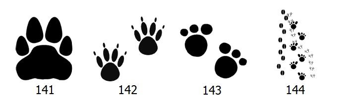 animal-graphics-5.jpg